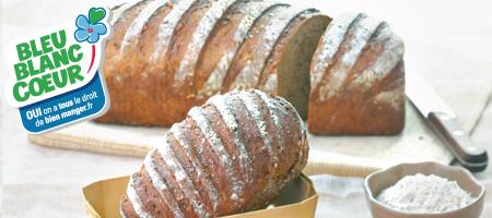 cerebrunbbc1-festival-des-pains