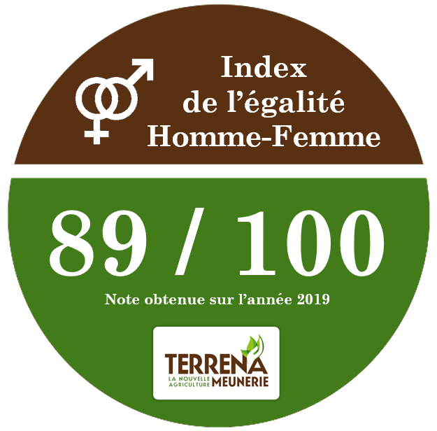 Index Egalité Homme-femme Terrena Meunerie 2019
